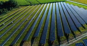solar panel field with screw piles